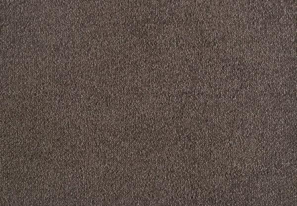 genius domestic carpet