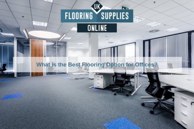 What is the Best Flooring Option for Offices